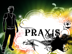 Series Graphic for Praxis